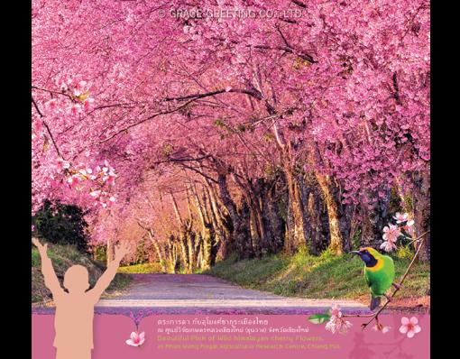 ปฏิทินตั้งโต๊ะ ปี 2561 CT.6108 Flower Blooming Season January