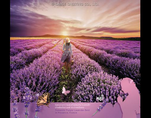 ปฏิทินตั้งโต๊ะ ปี 2561CT.6108 Flower Blooming Season July