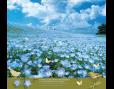ปฏิทินตั้งโต๊ะ ปี 2561 CT.6108 Flower Blooming Season March