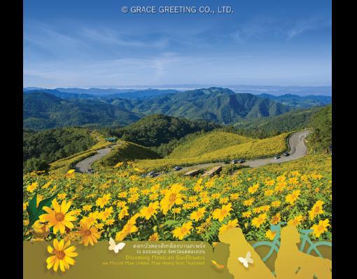 ปฏิทินตั้งโต๊ะ ปี 2561 CT.6108 Flower Blooming Season November
