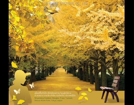 ปฏิทินตั้งโต๊ะ ปี 2561 CT.6108 Flower Blooming Season October